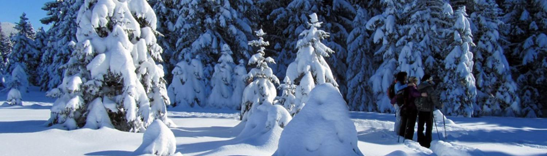 Geführte Schneeschuhwanderung im Allgäu