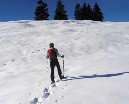 Individuelle Schneeschuhtour mit Allgäu Aktiv