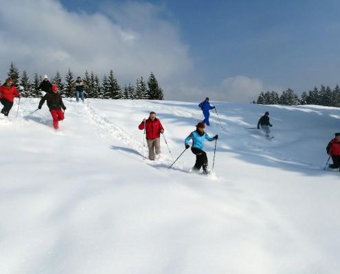 Tiefschneespaß bei einer geführte Schneeschuhwanderung
