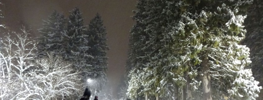 Schneeschuhtour bei Nacht im Allgäu